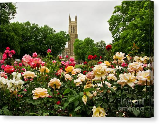 Duke Chapel And Roses Canvas Print