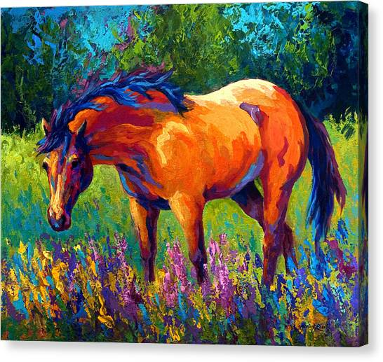 Equine Canvas Print - Dun Mare by Marion Rose