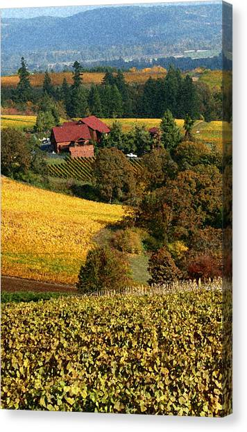Dundee Red Hills  Canvas Print