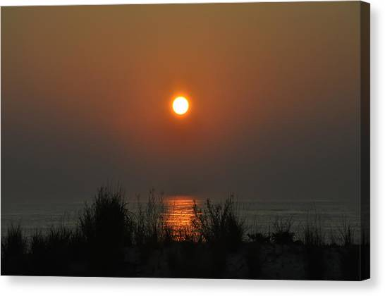 City Sunrises Canvas Print - Dune Grass Sunrise by Bill Cannon