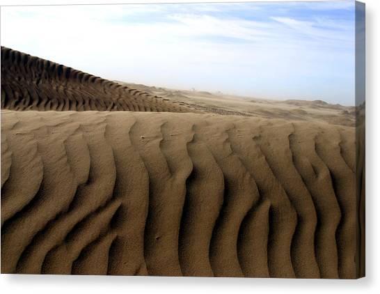 Dunes Of Alaska Canvas Print