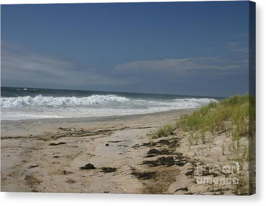 Dunes On Long Island Canvas Print by Dennis Curry