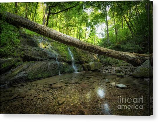 Dunnfield Creek  Canvas Print