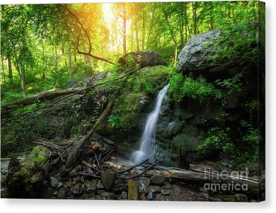Dunnfield Creek Sunrise  Canvas Print