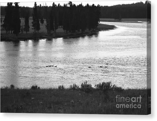 Dusk At The Yellowstone River Canvas Print by Susan Chandler