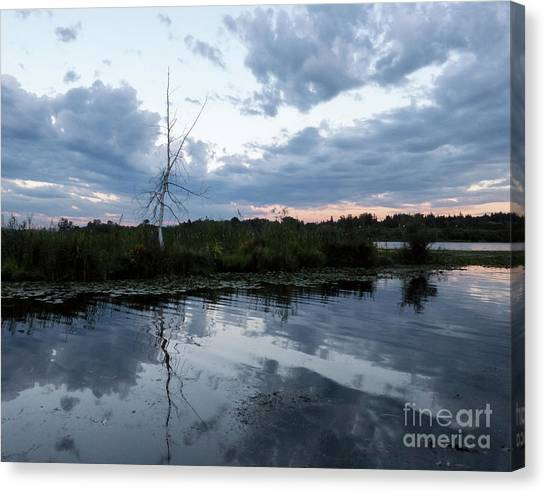 University Of Washington Canvas Print - Dusk At Union Bay by As the Dinosaur Flies Photography