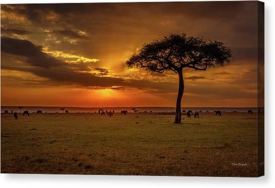 Dusk Over  The Serengeti Canvas Print