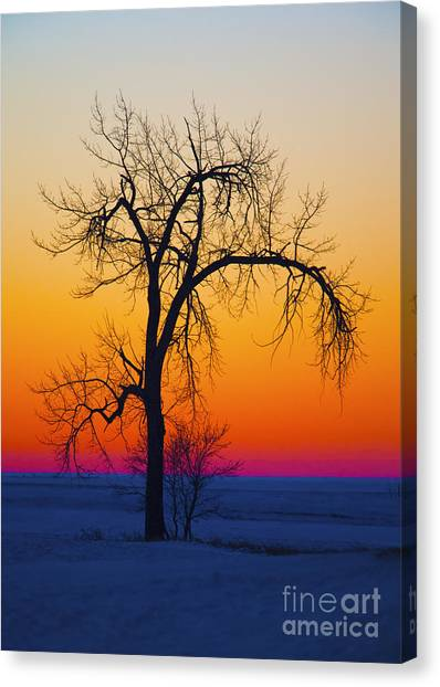 Dusk Surreal.. Canvas Print