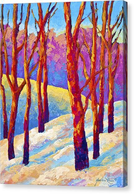 Aspen Canvas Print - Dusk's Veil by Marion Rose