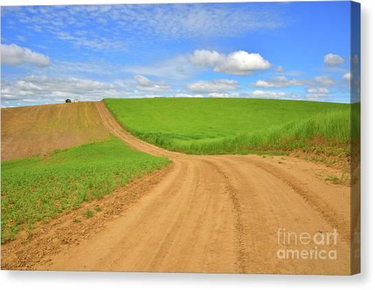 Dirt Road Canvas Print - Dusty Roads by Mike Dawson