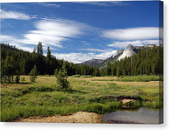 Canvas Print featuring the digital art Dusy Meadow by Visual Artist Frank Bonilla
