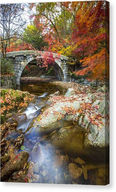 Dying Colours Canvas Print