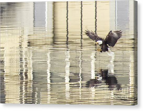 Eagle Abstract Canvas Print