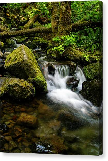 Eagle Creek Cascade Canvas Print