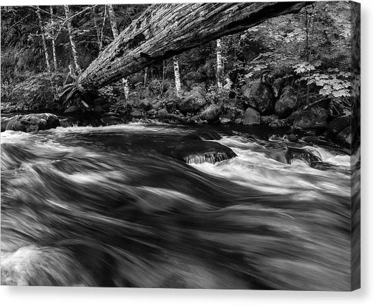 Eagle Creek  Canvas Print
