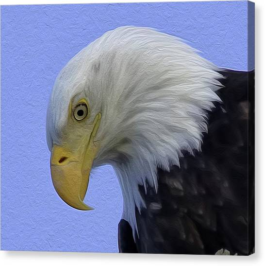 Eagle Head Paint Canvas Print
