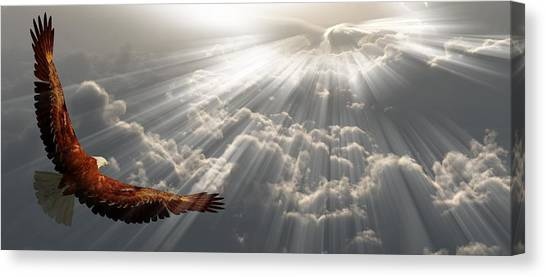 Eagle In Flight Above The Clouds Canvas Print
