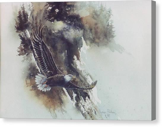 Eagle In Flight Canvas Print by Lynne Parker