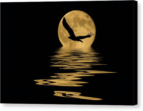 Eagle In The Moonlight Canvas Print