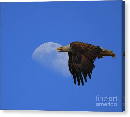 Eagle Moon Canvas Print