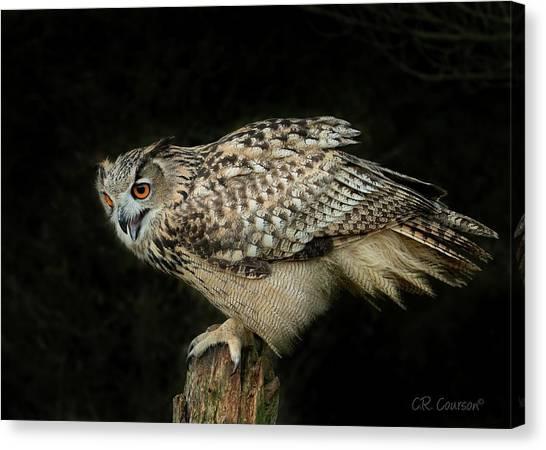 Eagle-owl Canvas Print