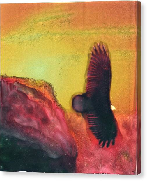 Eagle Spirit Canvas Print