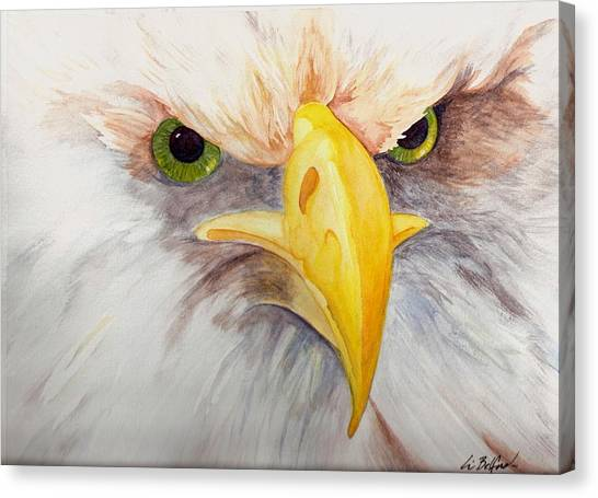 Eagle Stare Canvas Print by Eric Belford