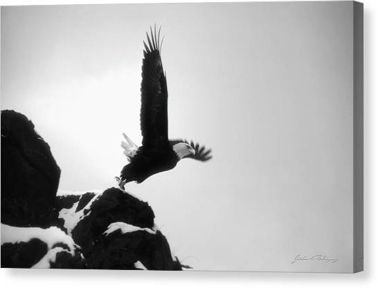 Eagle Takeoff At Adak, Alaska Canvas Print