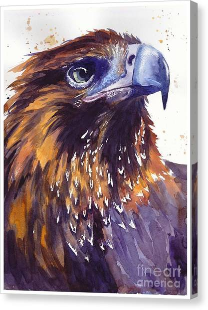 Hawks Canvas Print - Eagle's Head by Suzann's Art