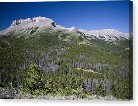 Ear Mountain, Montana Canvas Print