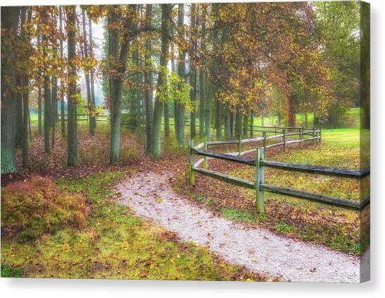 Woodland Walk Canvas Print - Early Autumn Stroll by Tom Mc Nemar