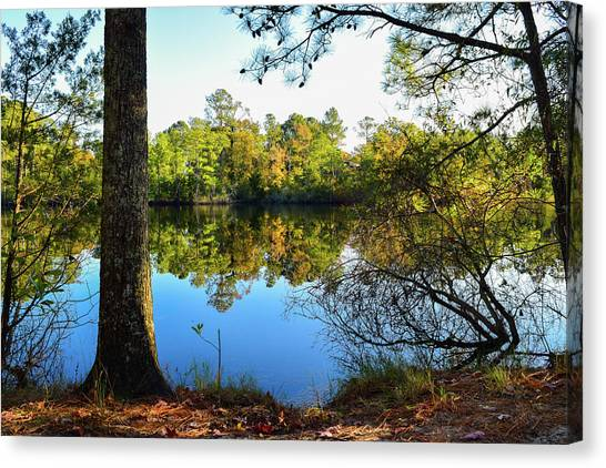 Early Fall Reflections Canvas Print
