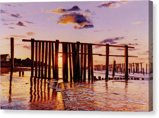 Early Morning Contrasts Canvas Print