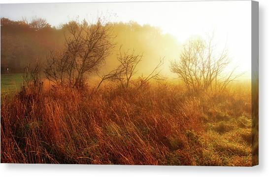 Early Morning Country Canvas Print