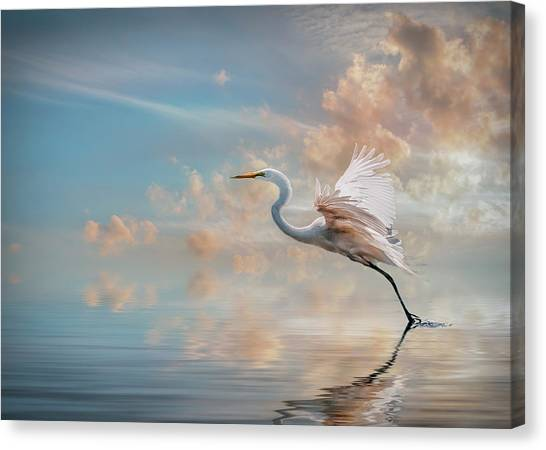 Early Morning Egret Canvas Print