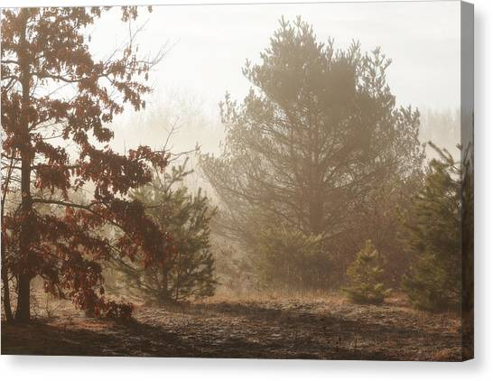 Canvas Print featuring the photograph Early Morning Nature by Scott Hovind