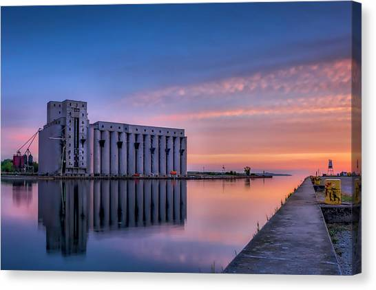 Early Morning Sentinels II Canvas Print