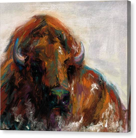 Bison Canvas Print - Early Morning Sunrise by Frances Marino