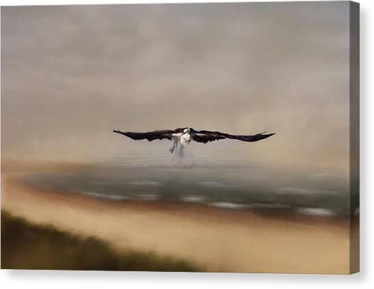 Canvas Print featuring the photograph Early Morning Takeoff by Kim Hojnacki