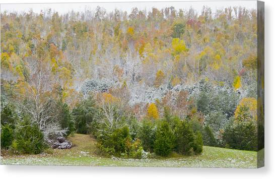 Early Snow Fall Canvas Print