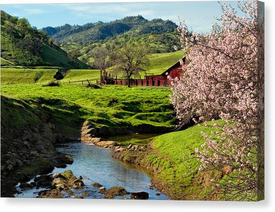 Bishop Hill Canvas Print - Early Spring In The Valley by Kathleen Bishop