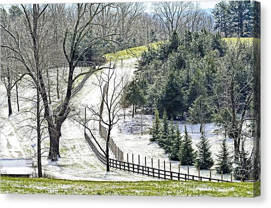Early Winter Pasture Canvas Print