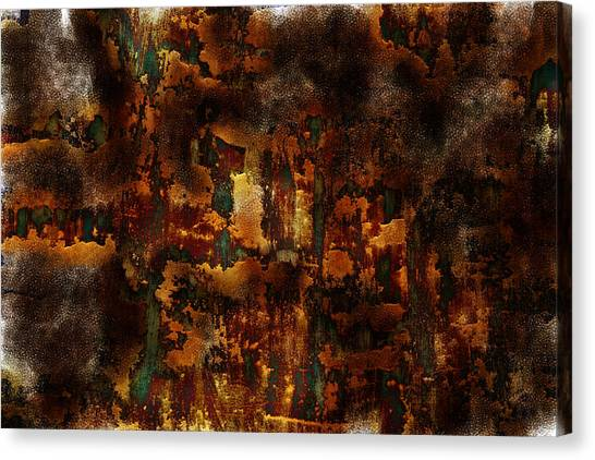 Clay Canvas Print - Earth Tones by Frank Tschakert