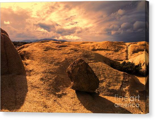 Earth's Seams Canvas Print