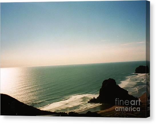 East Coastline In New Zealand Canvas Print