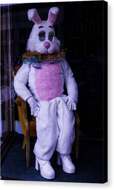 Easter Bunny Canvas Print - Easter Bunny Costume  by Garry Gay
