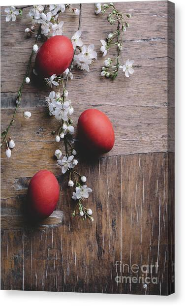 Easter Eggs Canvas Print - Easter Eggs And Spring Blossom by Jelena Jovanovic