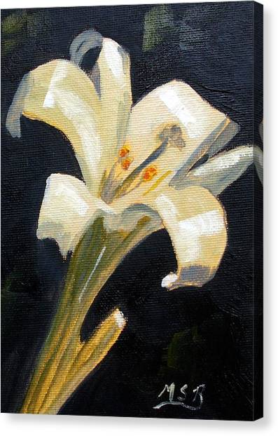 Easter Lilly Canvas Print by Maria Soto Robbins