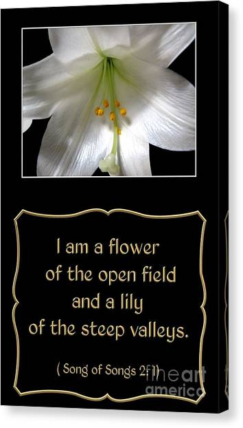 Canvas Print featuring the photograph Easter Lily With Song Of Songs Quote by Rose Santuci-Sofranko