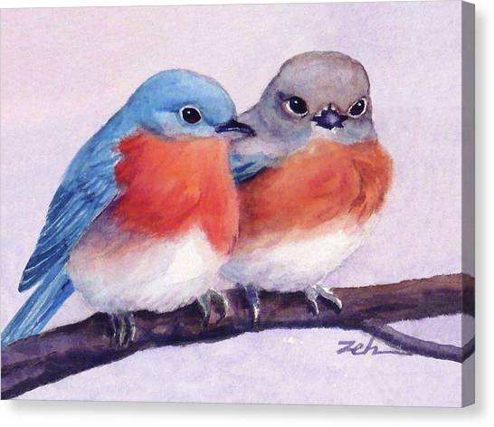 Eastern Bluebirds Canvas Print